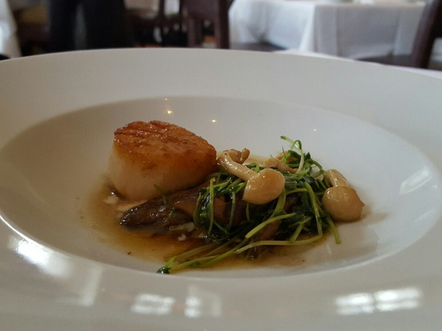 Milwaukee- Scallops